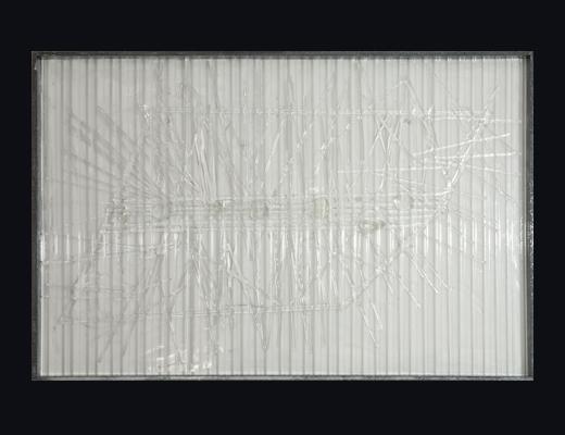 Aquilone libero nel cielo opera Angelo Muriotto artista